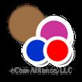 Eli Malahi, eCom Alliance